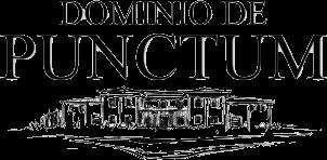Dominio de Punctum