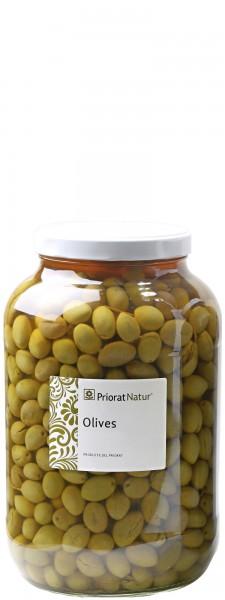 Manzanilla Oliven 2,5 kg